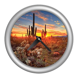 Chicago Lighthouse | Southwest - Cactus  14 inch decorative wall clock