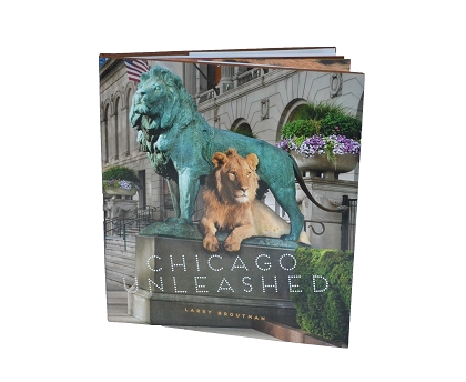 Chicago Unleashed by Larry Broutman