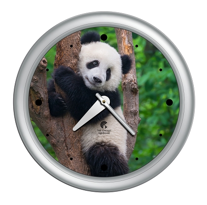 Panda |14 inch Quartz Movement Decorative Wall Clock; Silver Designer Body